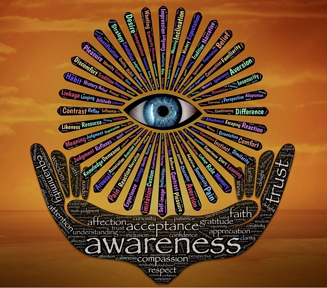 From Outer Landscape to Inner Landscape: The Growth of Awareness