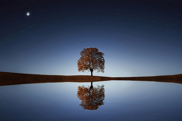 Cultivating Equanimity through Mindfulness Meditation
