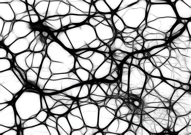 What Does Neuroscience Tell Us About the Benefits of Mindfulness?
