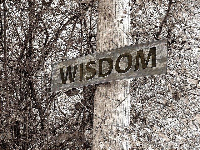 Mindfulness: A Pathway to Wisdom