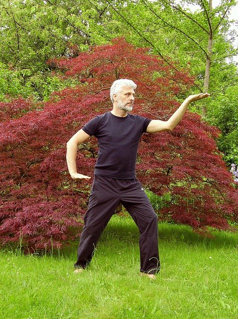 Sustaining a Daily Practice of Tai Chi